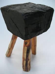 bog-yew-pod-stool